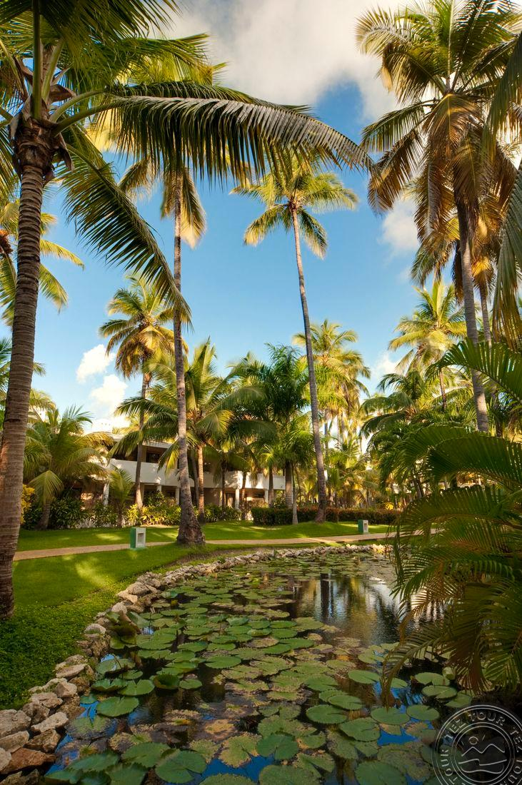 MELIA CARIBE BEACH RESORT 5 * №5