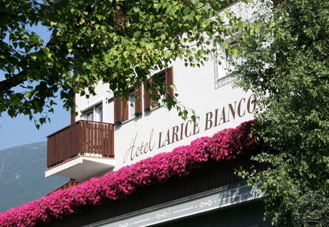 LARICE BIANCO HOTEL (BORMIO) 3 * №15