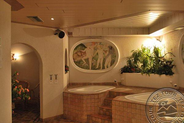 RODODENDRO HOTEL (CAMPITELLO) 3 * №3