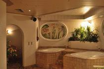 RODODENDRO HOTEL (CAMPITELLO) 3 * №2